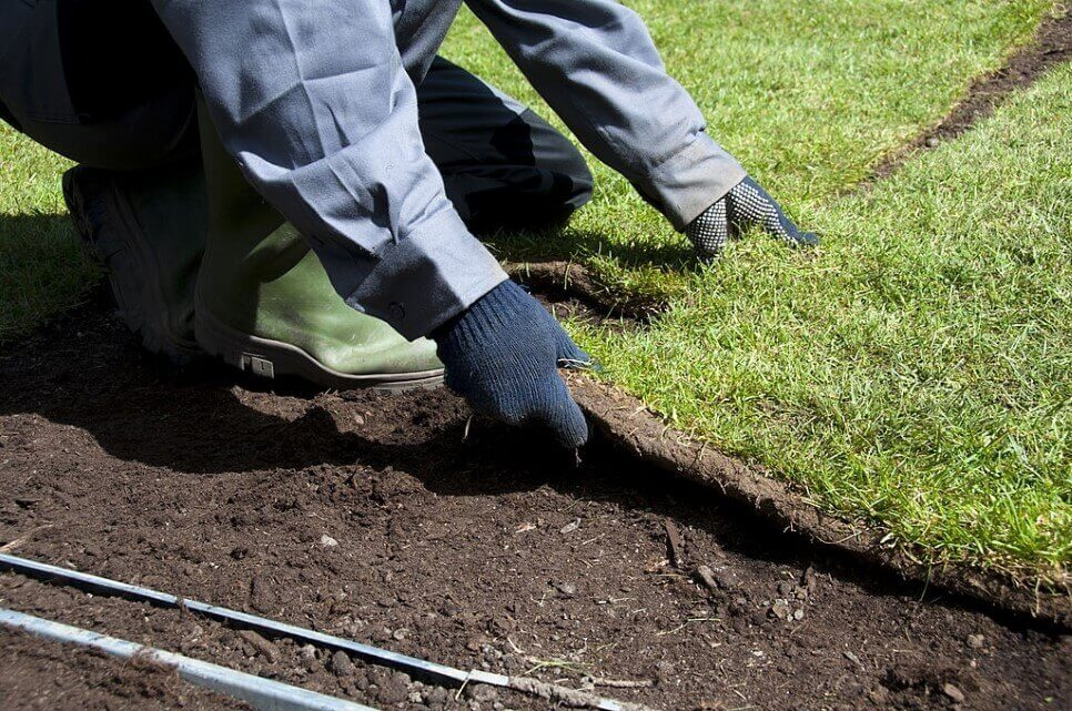 Sod Placement Service Company