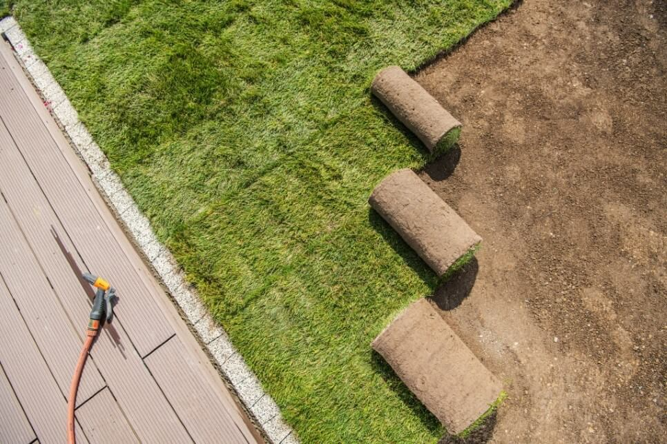 Sod Placement Service